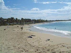 Plum_Bay_Beach
